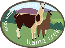 Llama Trek Scotland Logo